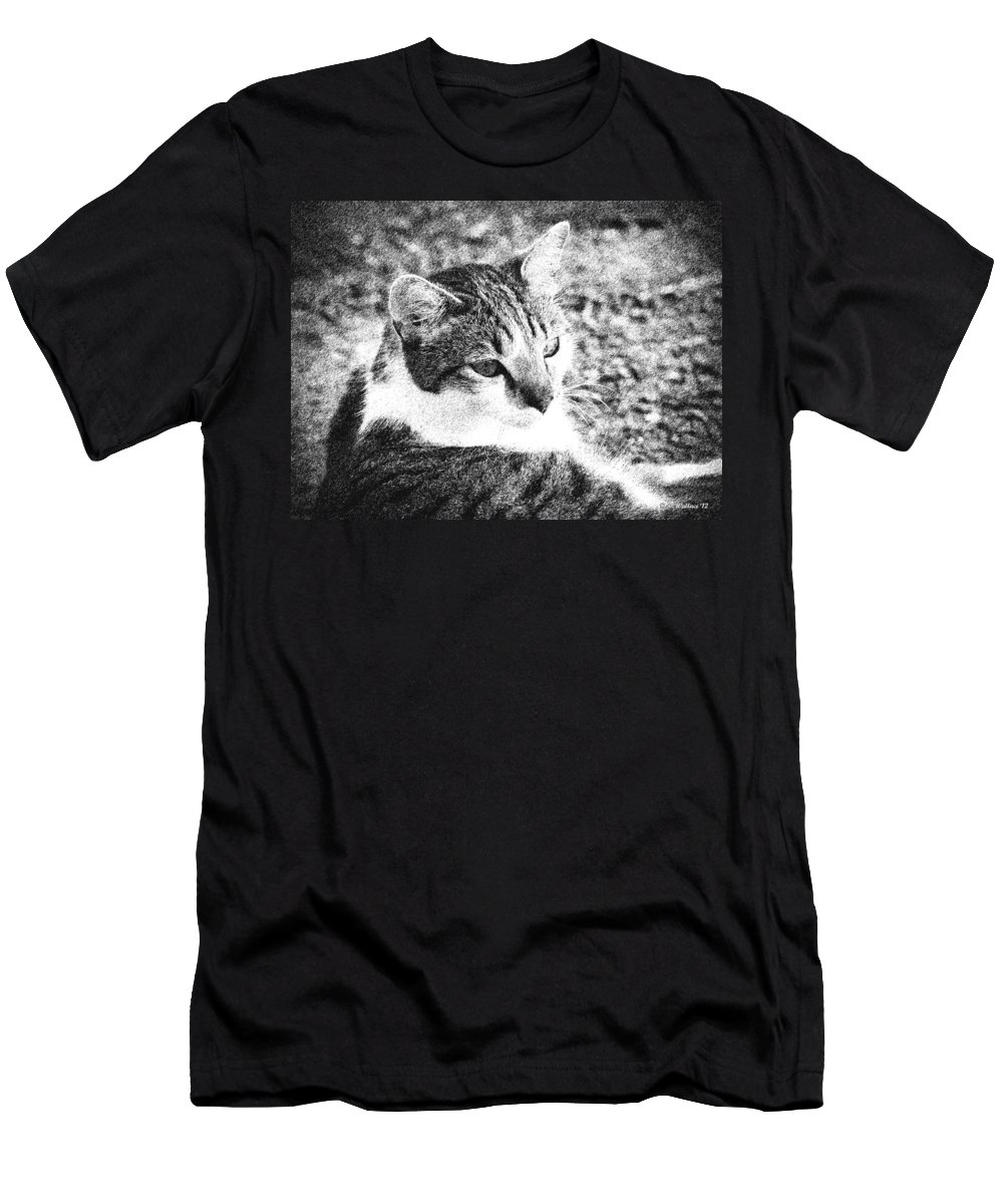 2d Men's T-Shirt (Athletic Fit) featuring the photograph Feline Pose by Brian Wallace