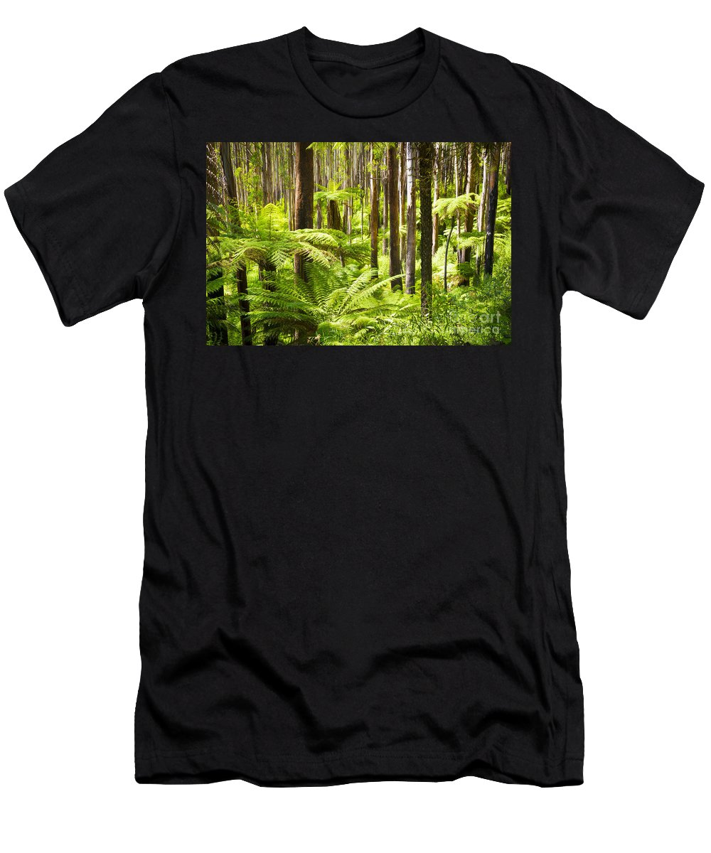Black Men's T-Shirt (Athletic Fit) featuring the photograph Fern Forest by Tim Hester