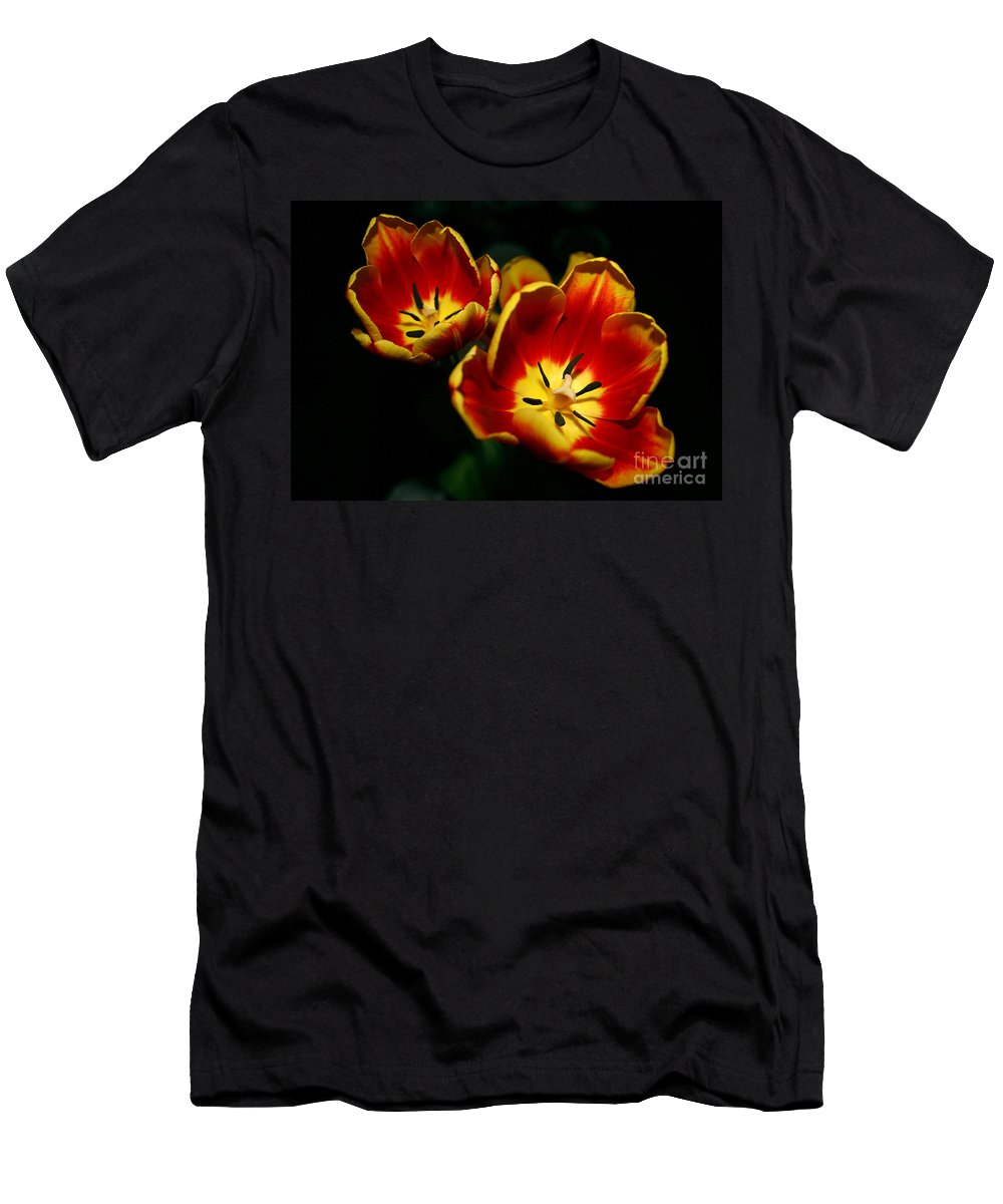 Flowers Men's T-Shirt (Athletic Fit) featuring the photograph Fire Tulip Flowers by Nikki Vig