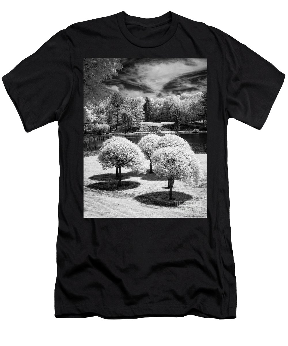 Ir Men's T-Shirt (Athletic Fit) featuring the photograph Five Trees by Claudia Kuhn