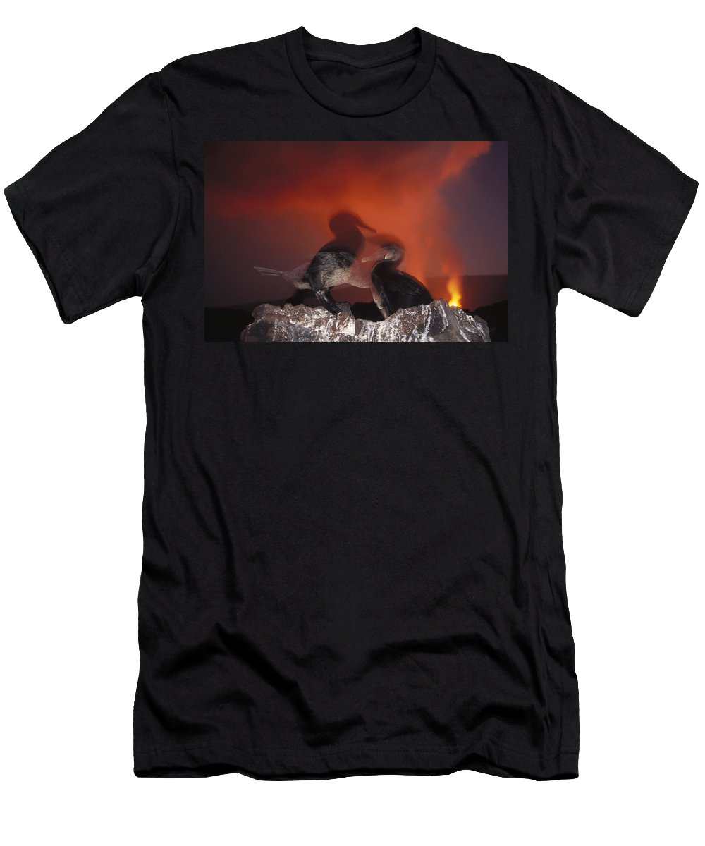 Feb0514 Men's T-Shirt (Athletic Fit) featuring the photograph Flightless Cormorants And Volcanic by Tui De Roy