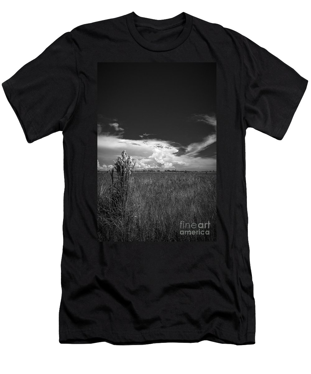 Sand Dunes Men's T-Shirt (Athletic Fit) featuring the photograph Florida Flat Land by Marvin Spates