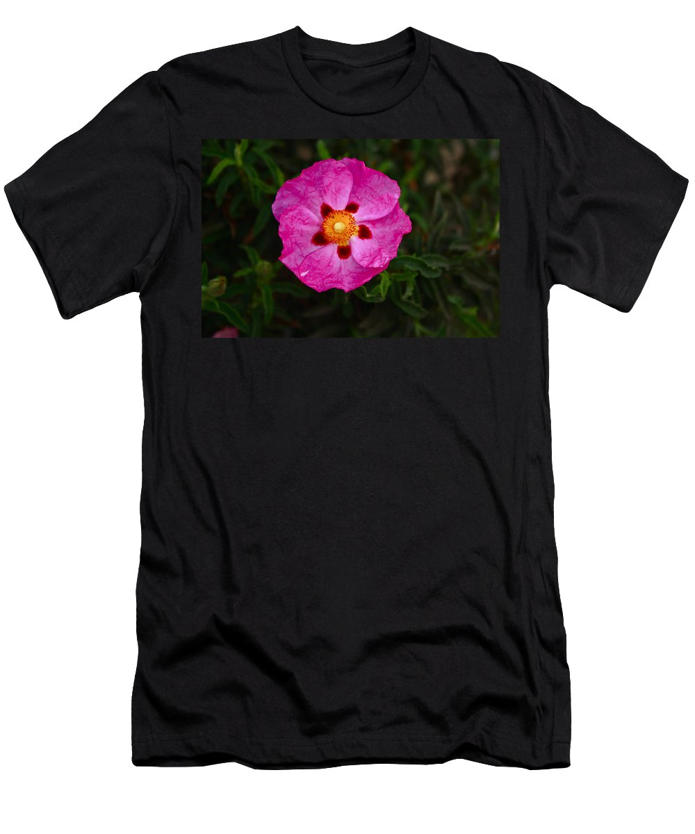 Flower Men's T-Shirt (Athletic Fit) featuring the photograph Flower 1 by Carol Tsiatsios