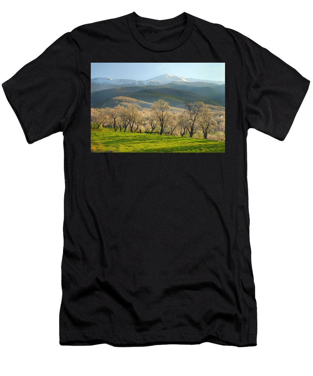 Almond Men's T-Shirt (Athletic Fit) featuring the photograph Flowering Almond At The Mountains by Guido Montanes Castillo