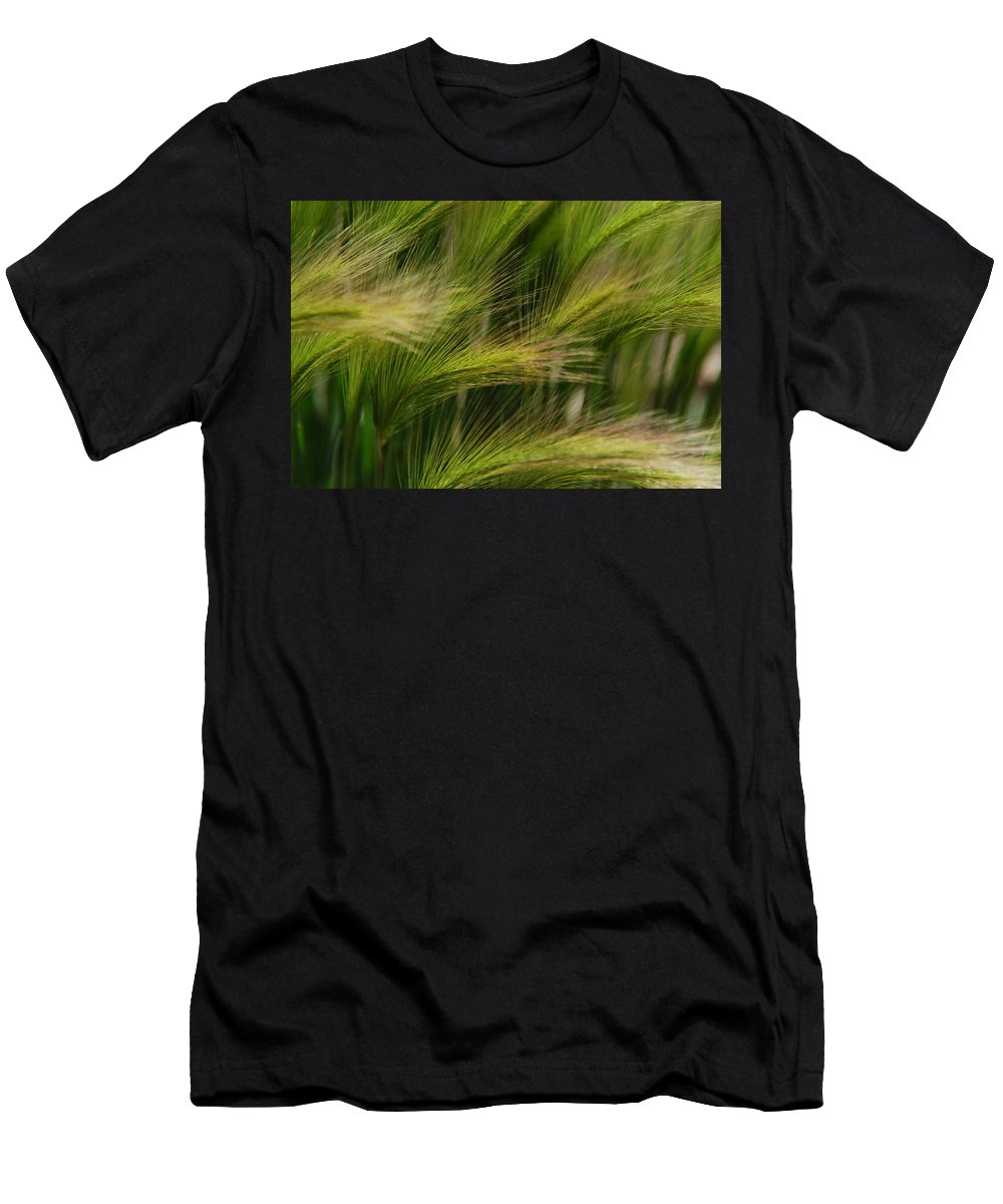 Grasses Men's T-Shirt (Athletic Fit) featuring the photograph Flowing Grasses by Tam Ryan