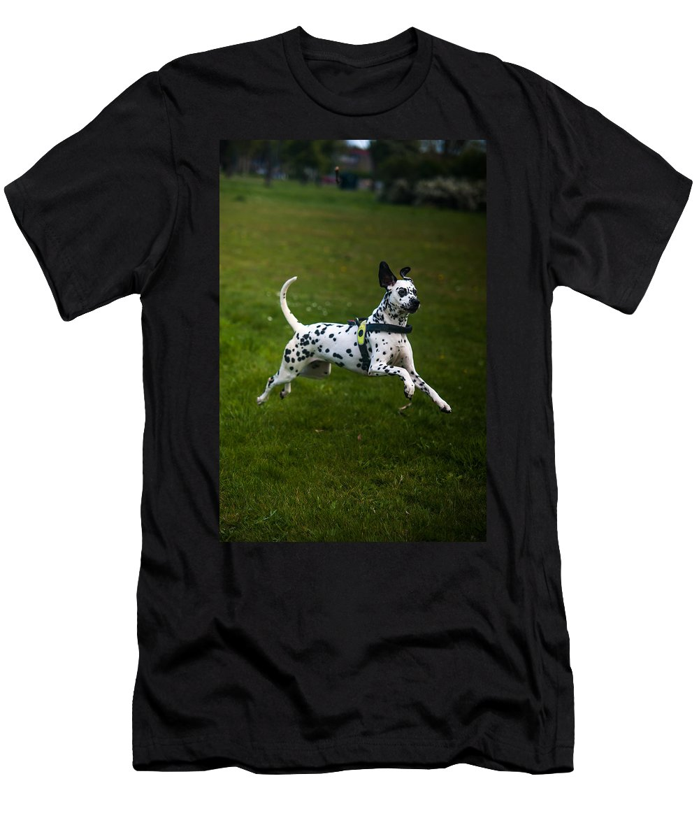 Dalmation Men's T-Shirt (Athletic Fit) featuring the photograph Flying Crazy Dog. Kokkie. Dalmation Dog by Jenny Rainbow