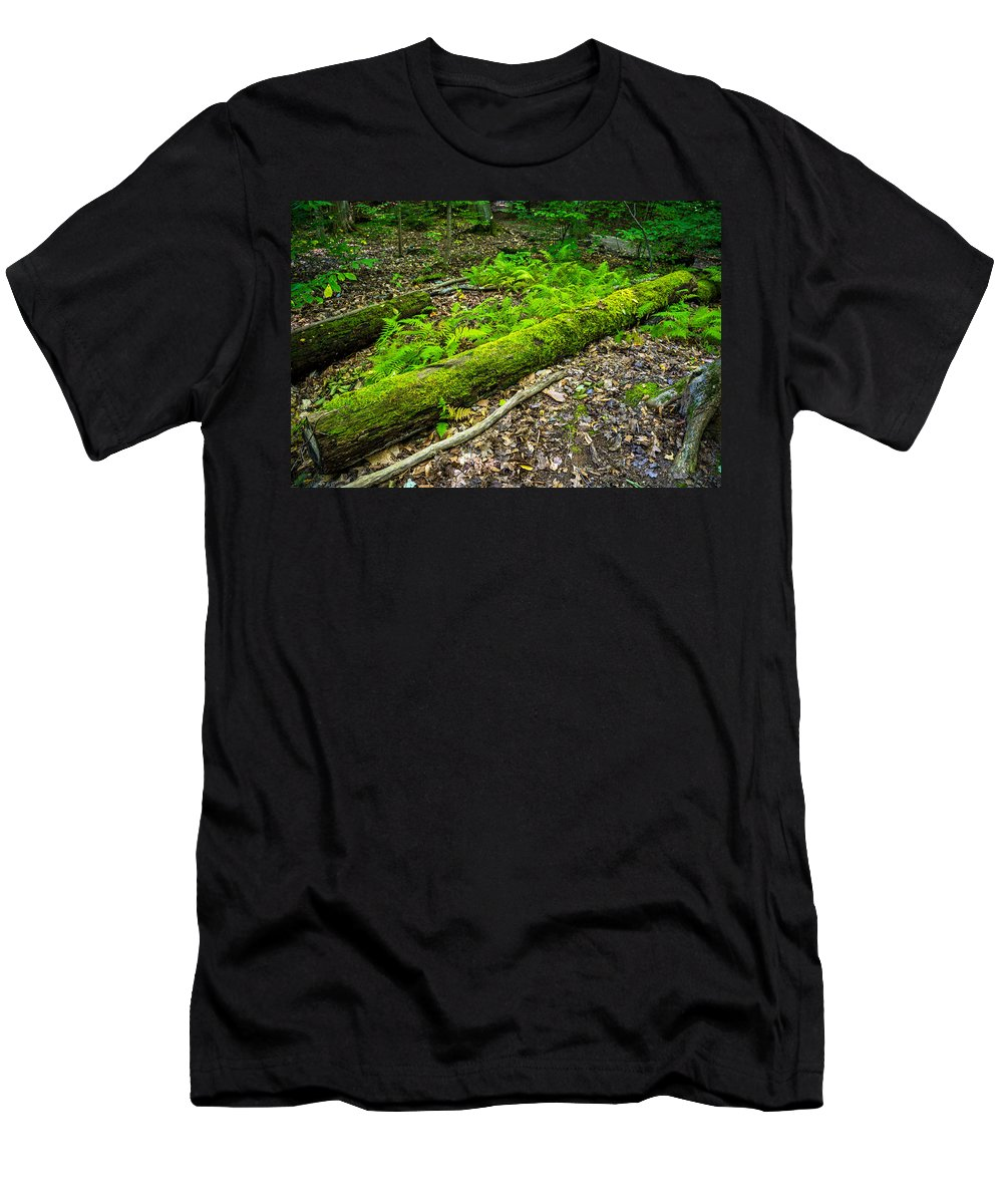 Gosnell Big Woods Men's T-Shirt (Athletic Fit) featuring the photograph Forest Floor Gosnell Big Woods by Tim Buisman