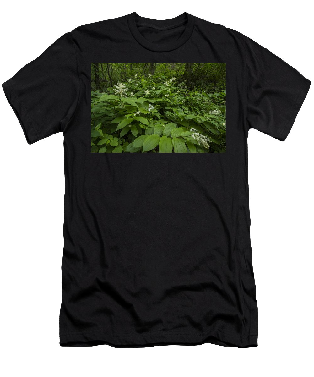 Appalachia Men's T-Shirt (Athletic Fit) featuring the photograph Forest Flowers by Debra and Dave Vanderlaan