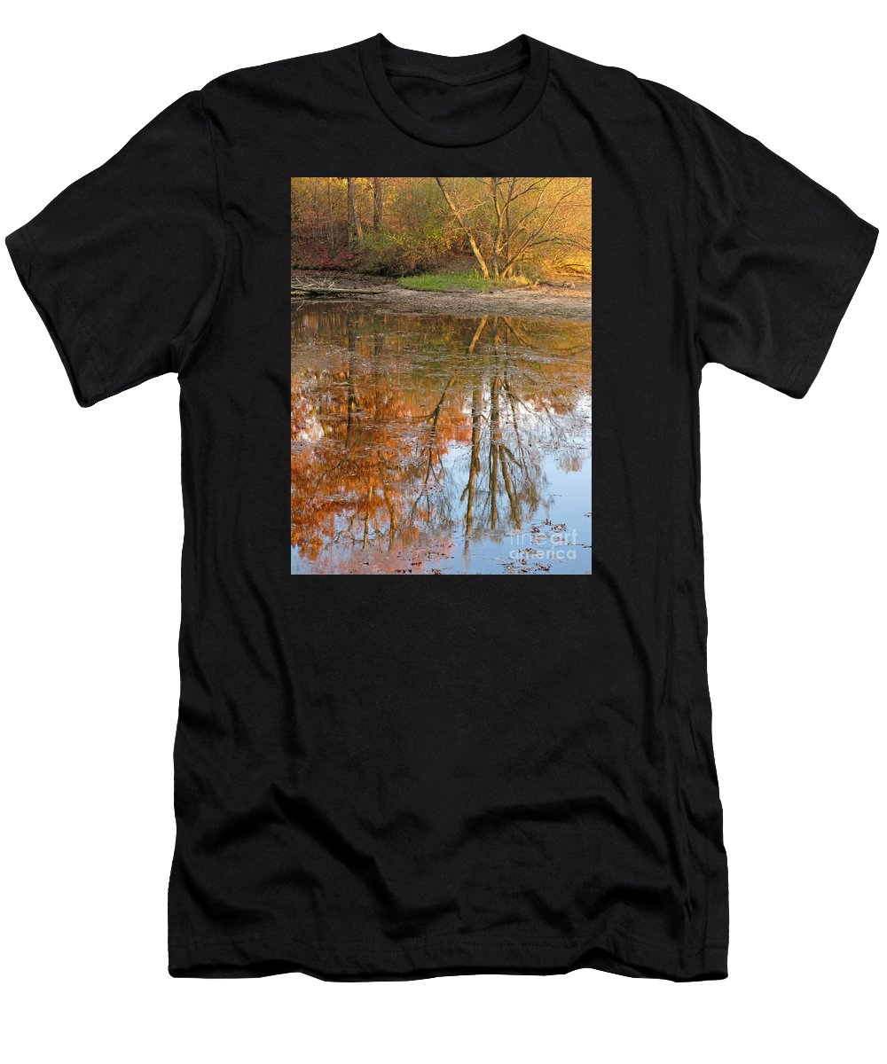Autumn Men's T-Shirt (Athletic Fit) featuring the photograph Forest Glow by Ann Horn