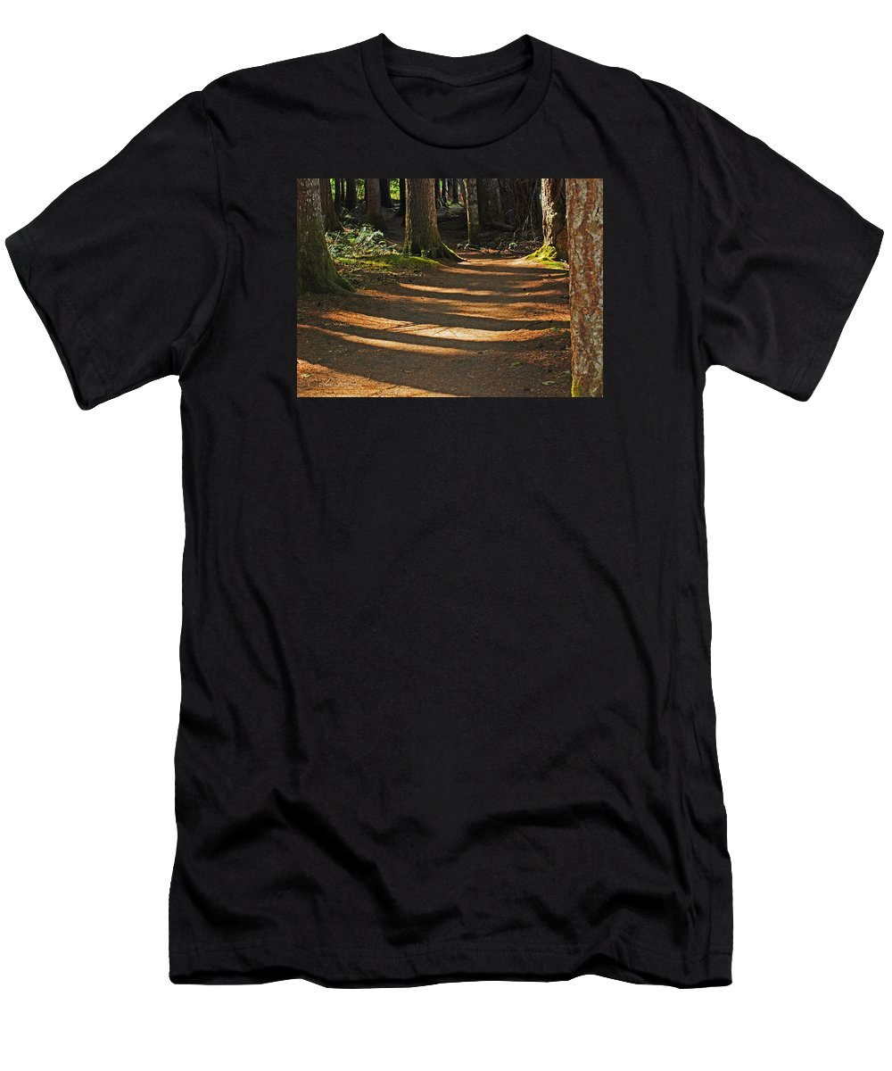 Hiking_path Men's T-Shirt (Athletic Fit) featuring the photograph Forest Path by Connie Fox