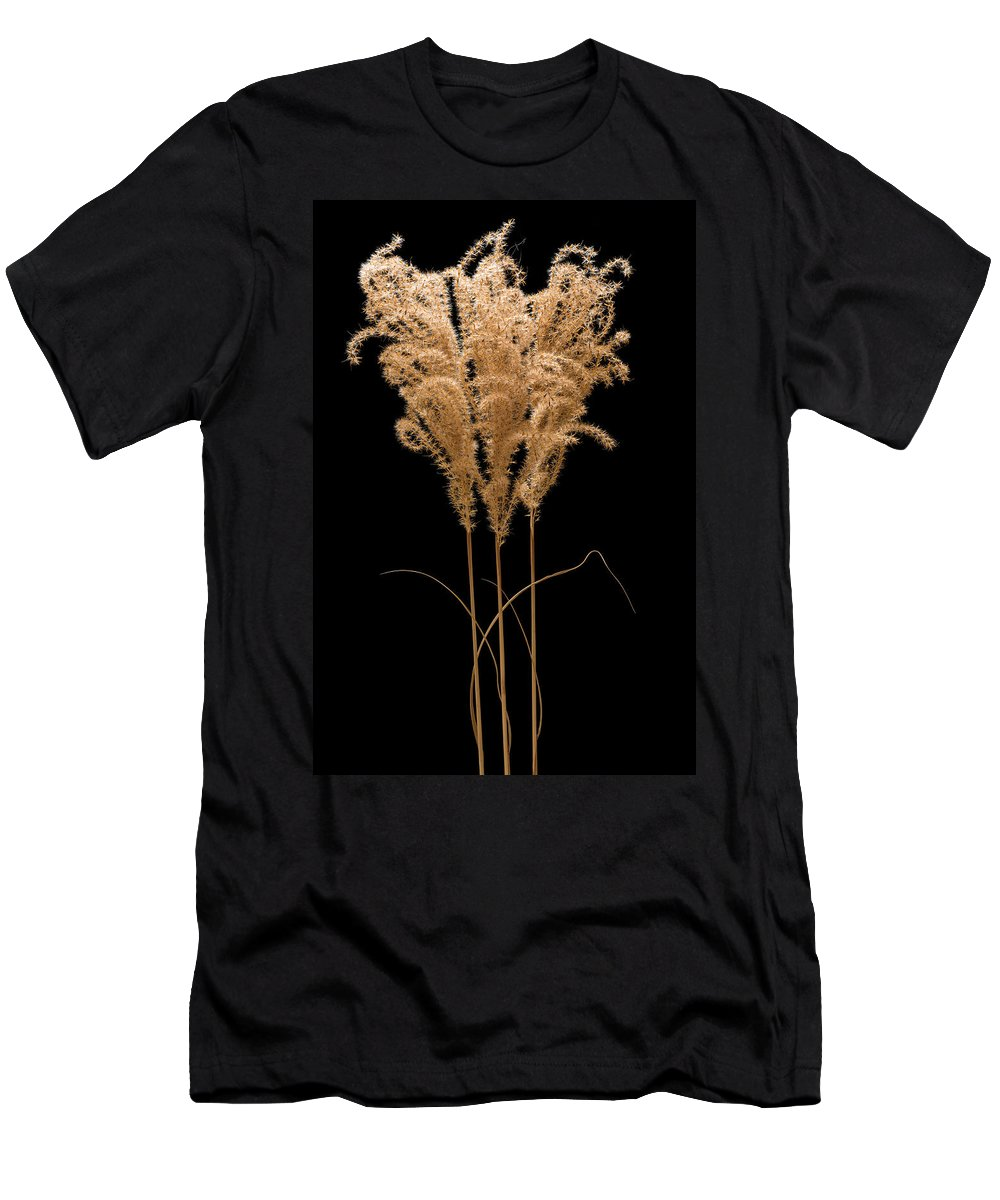 Fountain Men's T-Shirt (Athletic Fit) featuring the photograph Fountain Grass by Steve Gadomski