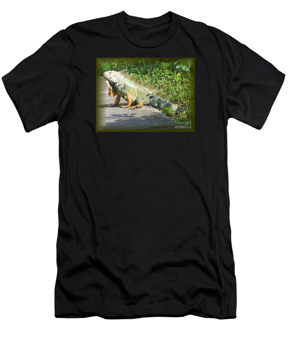 Iguana Men's T-Shirt (Athletic Fit) featuring the photograph Framed Iguana by Christiane Schulze Art And Photography