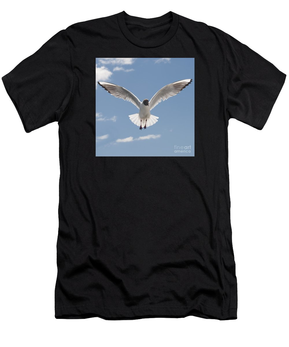 Festblues Men's T-Shirt (Athletic Fit) featuring the photograph Freedom.. by Nina Stavlund