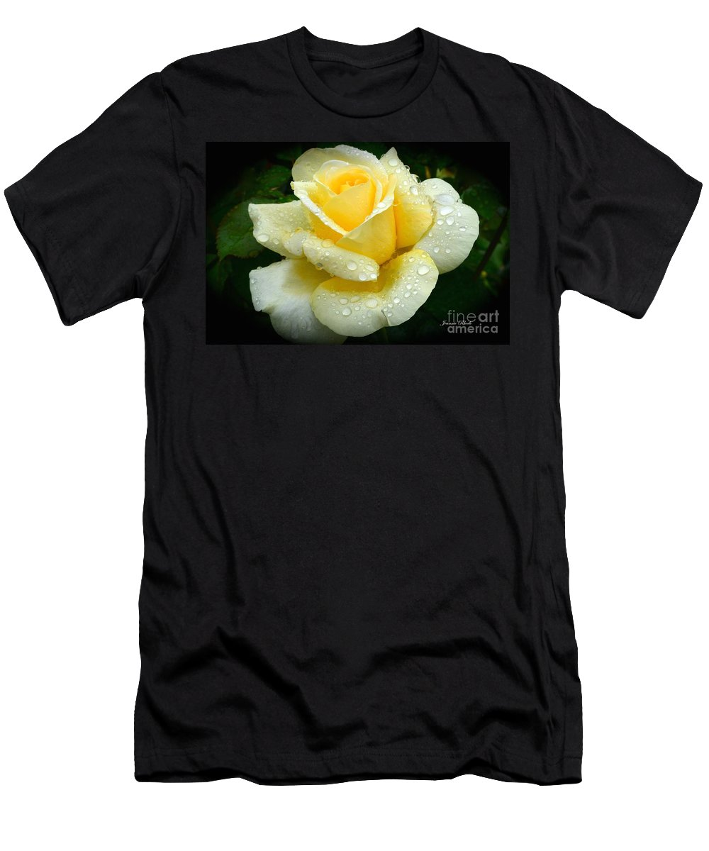 Fresh Sunshine Daydream Rose Men's T-Shirt (Athletic Fit) featuring the photograph Fresh Sunshine Daydream Rose by Jeannie Rhode