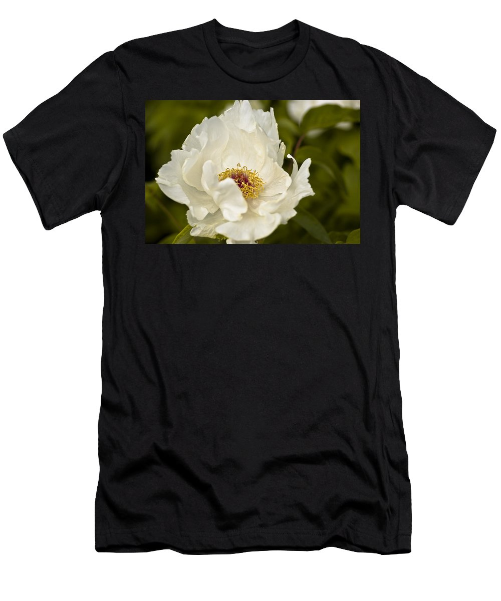 Flower Men's T-Shirt (Athletic Fit) featuring the photograph Frilly by Samantha Eisenhauer