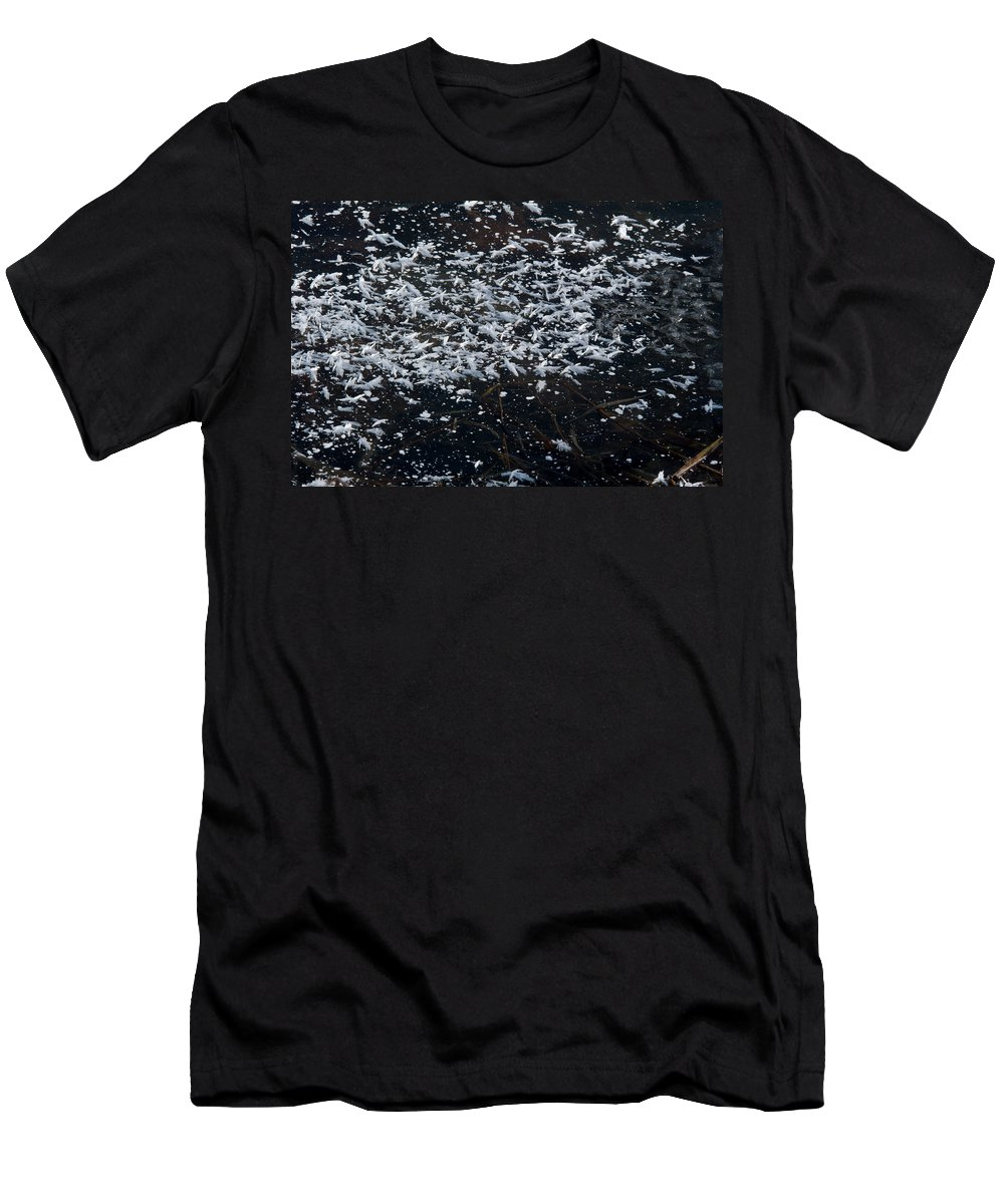 Frost Men's T-Shirt (Athletic Fit) featuring the photograph Frost Flakes On Ice - 33 by Larry Jost
