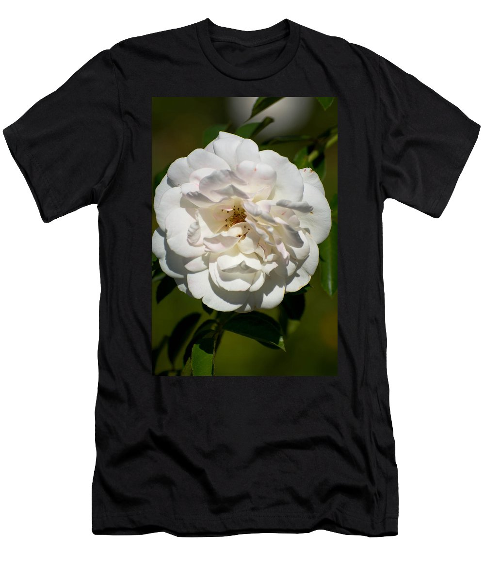 White Men's T-Shirt (Athletic Fit) featuring the photograph Full Bloom by Michael Moriarty