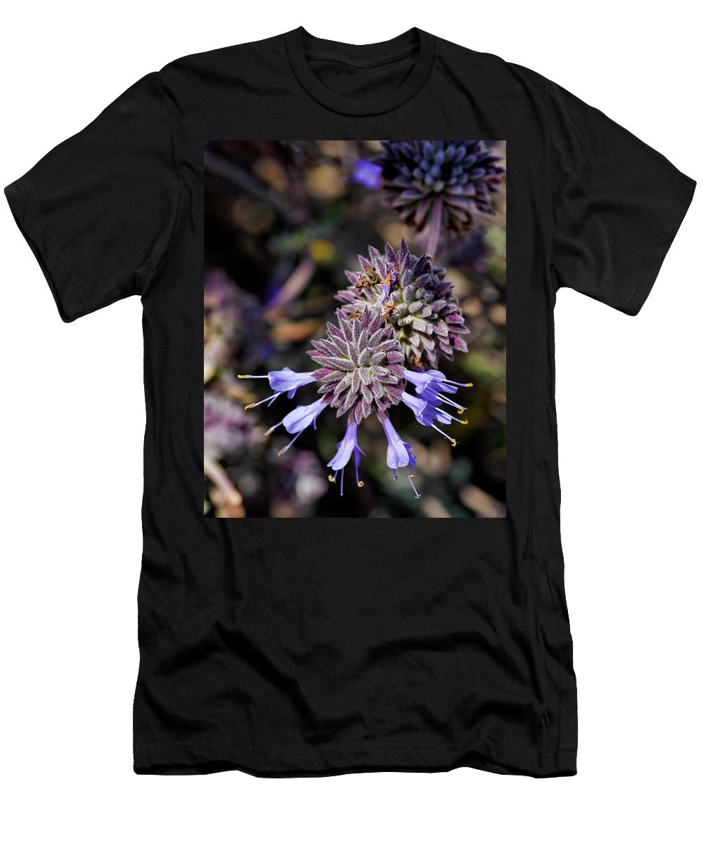 Salvia Apiana Men's T-Shirt (Athletic Fit) featuring the photograph Fuzzy Purple 1 by Kelley King