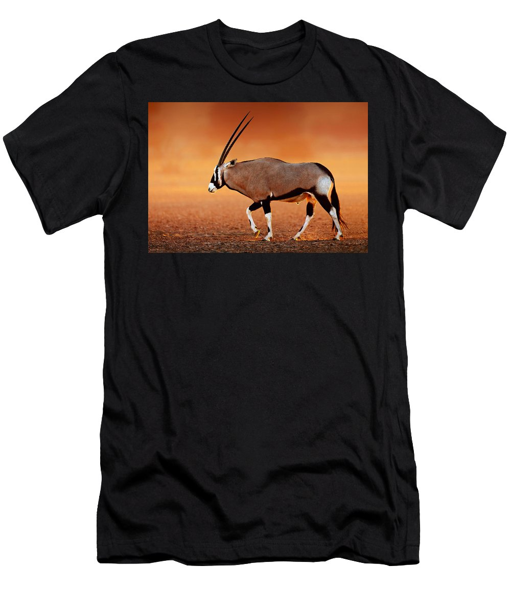 Gemsbok Men's T-Shirt (Athletic Fit) featuring the photograph Gemsbok On Desert Plains At Sunset by Johan Swanepoel