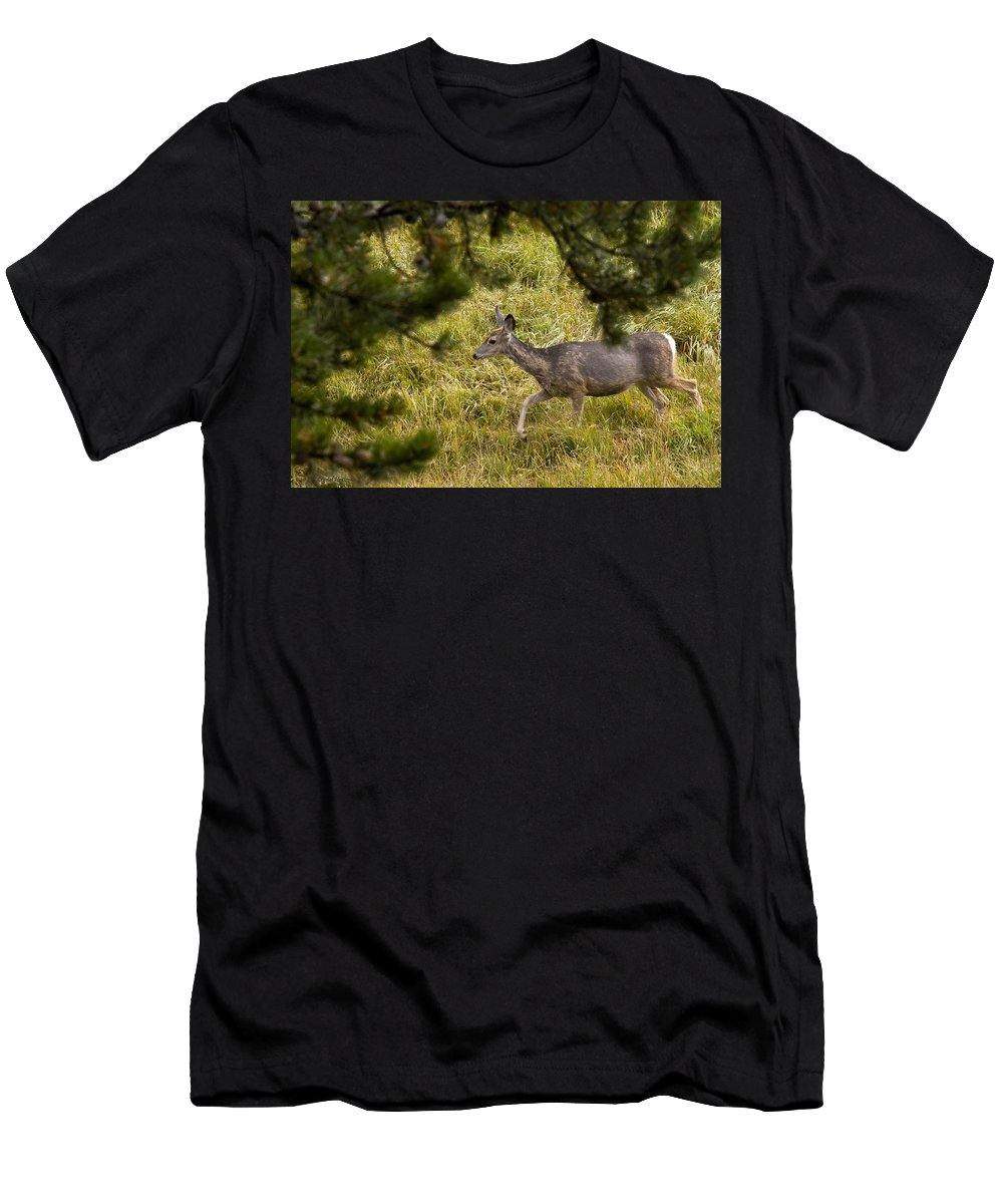Deer Men's T-Shirt (Athletic Fit) featuring the photograph Getting Out Of Sight by Crystal Heitzman Renskers