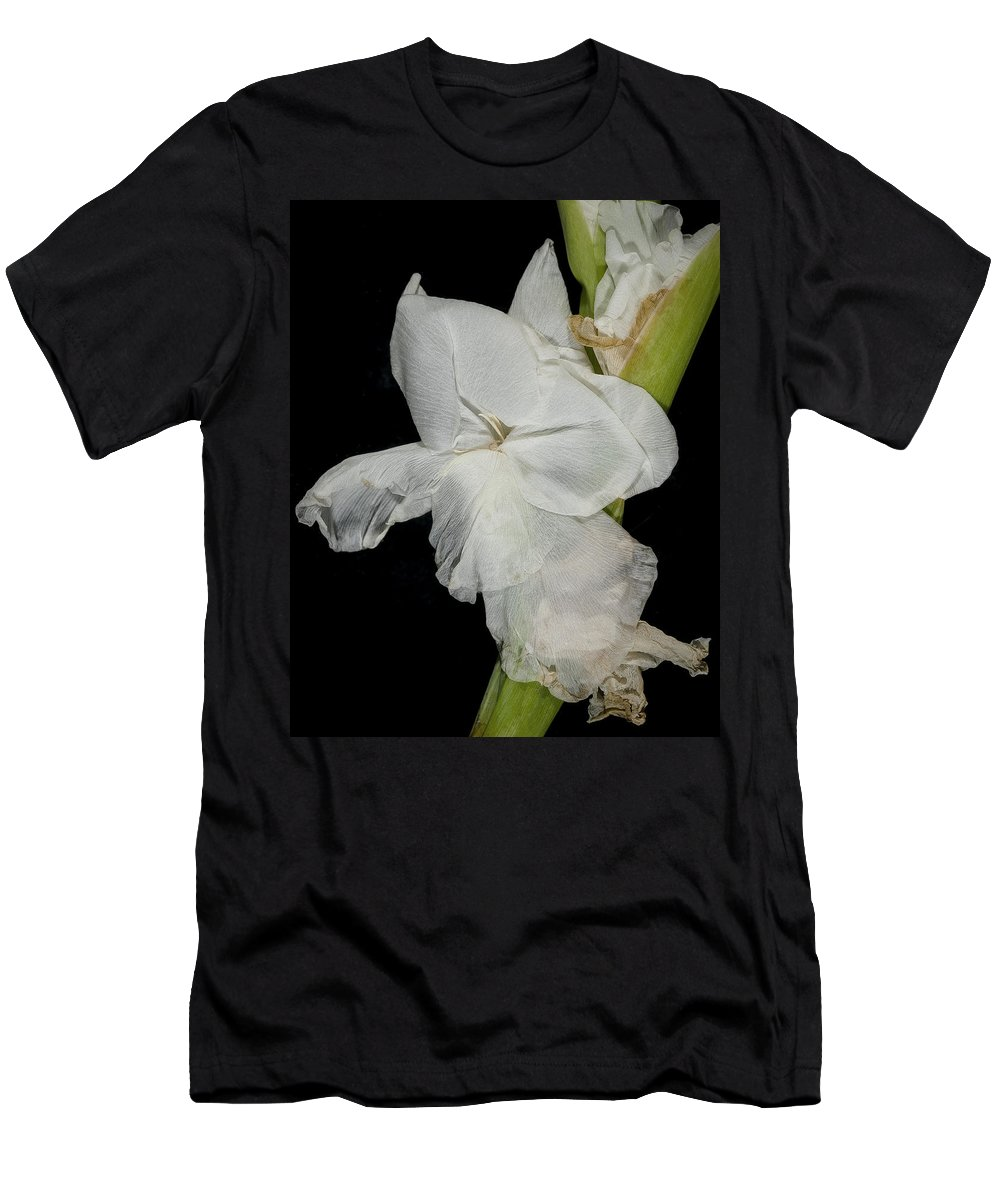 Flower Men's T-Shirt (Athletic Fit) featuring the photograph Gladiolus Past Time by David Stone