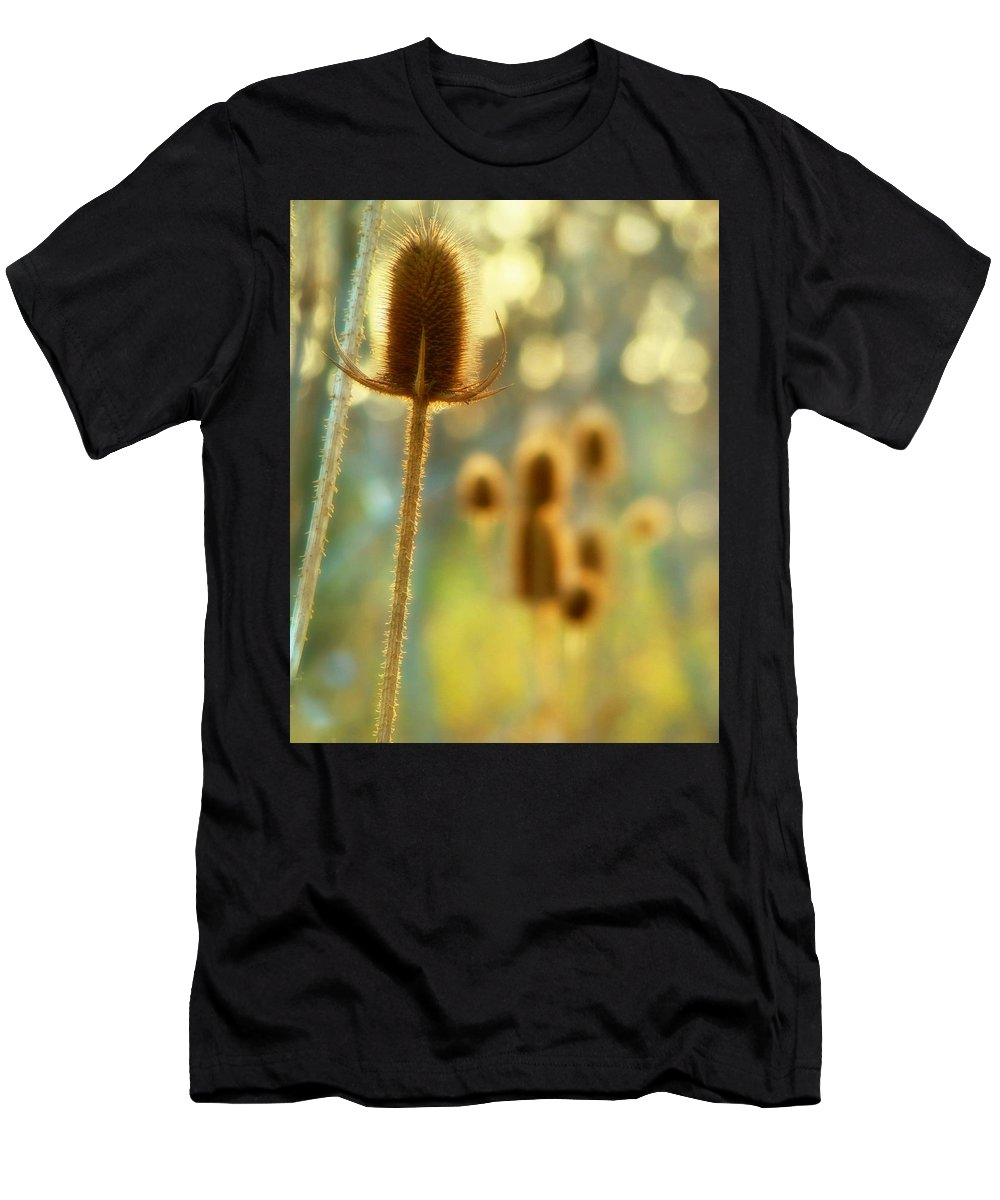 Nature Men's T-Shirt (Athletic Fit) featuring the photograph Golden Teasels by Gothicrow Images