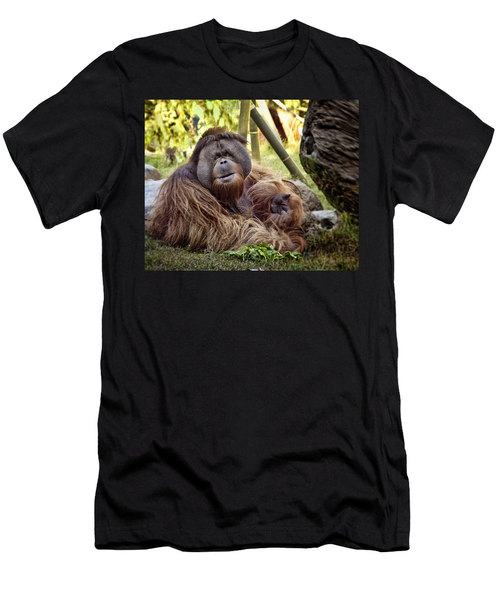 Monkey Men's T-Shirt (Athletic Fit) featuring the photograph Good Day Mate by Jon Berghoff