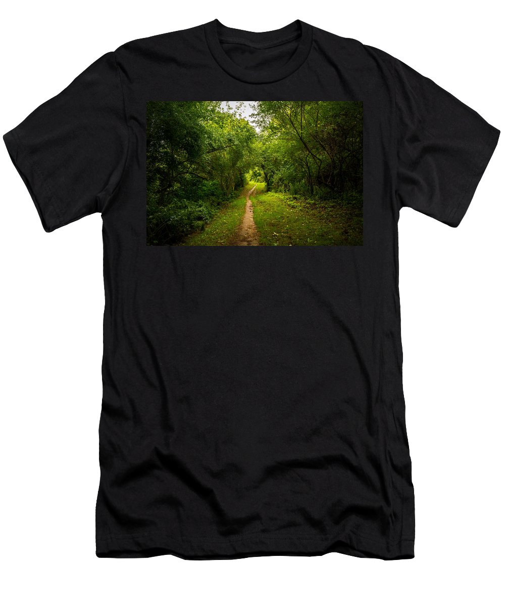 Gosnell Big Woods Men's T-Shirt (Athletic Fit) featuring the photograph Gosnell Big Woods Trail by Tim Buisman