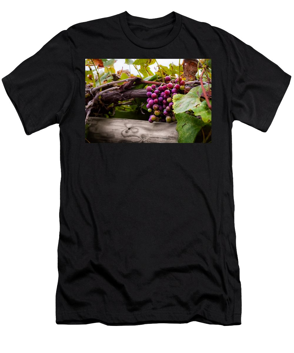 Grape Men's T-Shirt (Athletic Fit) featuring the photograph Grapes On The Vine by Ron Pate