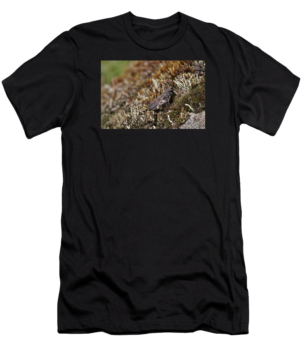 Grasshopper Men's T-Shirt (Athletic Fit) featuring the photograph Grasshopper by Dreamland Media