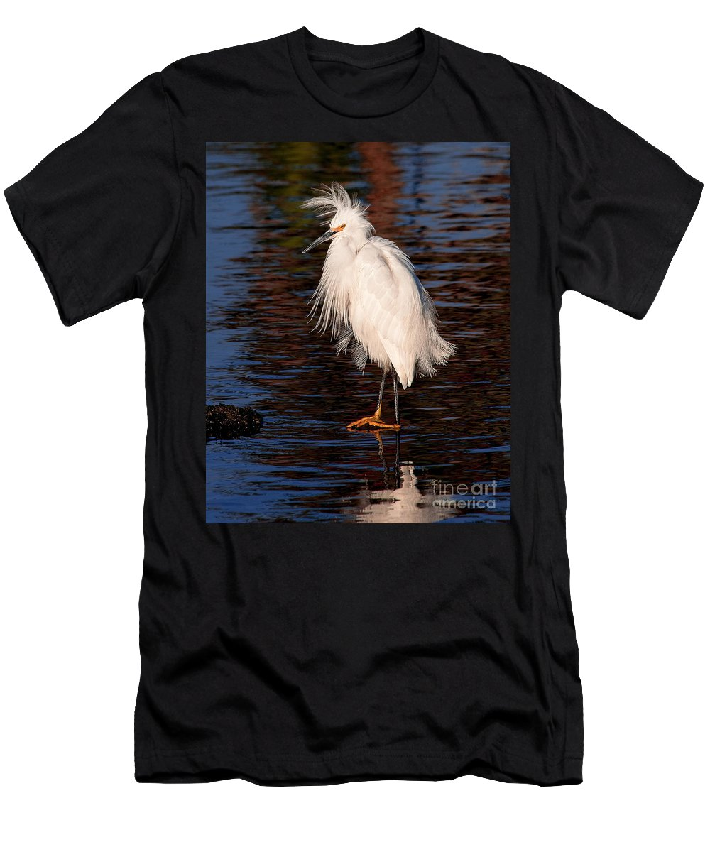 Great Egret Bird Photographs Men's T-Shirt (Athletic Fit) featuring the photograph Great Egret Walking On Water by Jerry Cowart