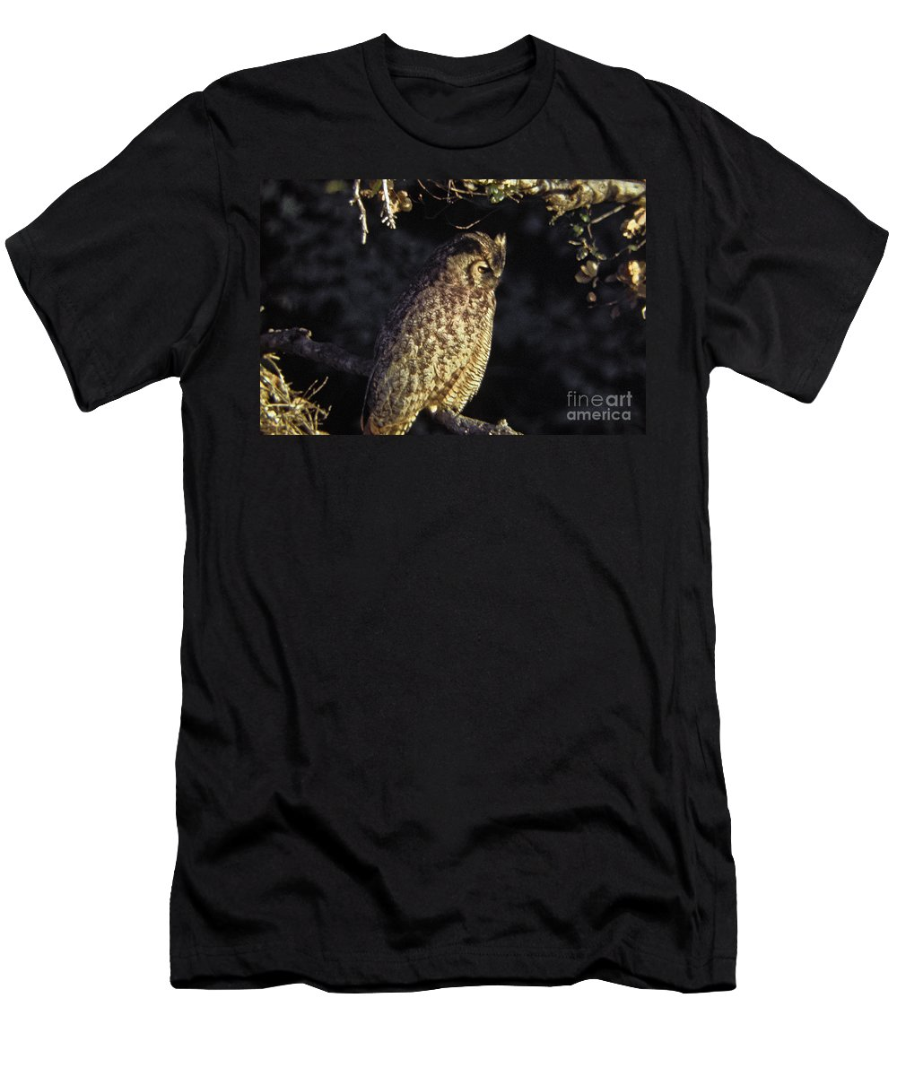 Owl Men's T-Shirt (Athletic Fit) featuring the photograph Great Horned Owl by Howard Stapleton