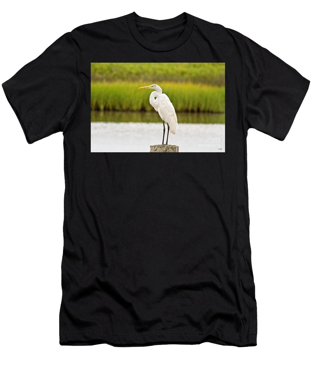 Marsh Men's T-Shirt (Athletic Fit) featuring the photograph Great Egret by Scott Pellegrin