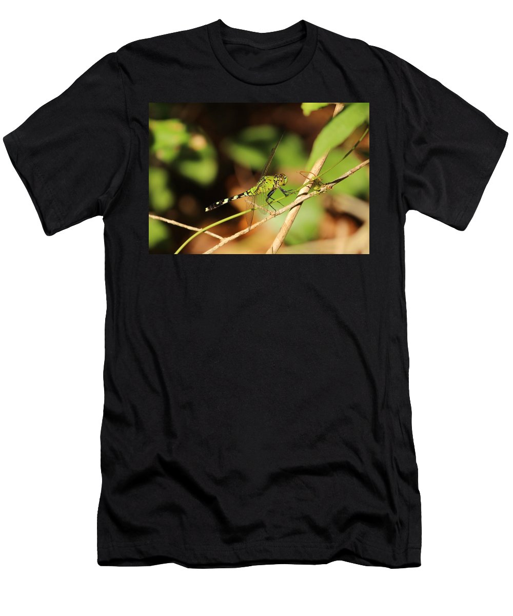 Green Men's T-Shirt (Athletic Fit) featuring the photograph Green Dragonfly by Cynthia Guinn