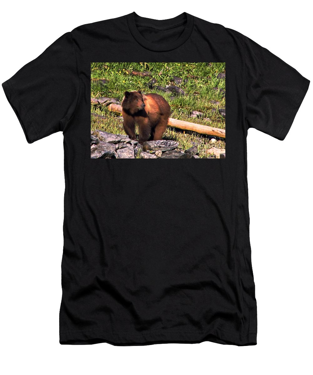 Bear Men's T-Shirt (Athletic Fit) featuring the photograph Grizzly Bear by Robert Bales