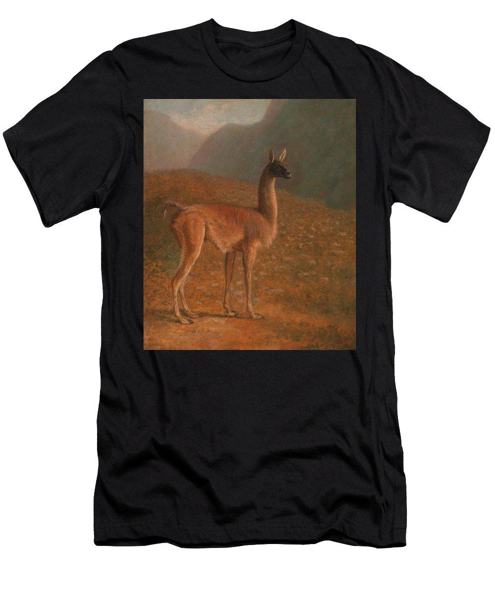 Jacques-laurent Agasse Men's T-Shirt (Athletic Fit) featuring the painting Guanaco by Jacques-Laurent Agasse