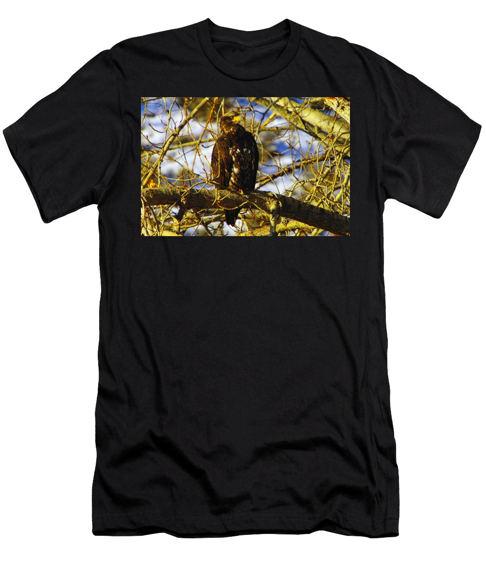 Eagles Men's T-Shirt (Athletic Fit) featuring the photograph Hanging By The River by Jeff Swan