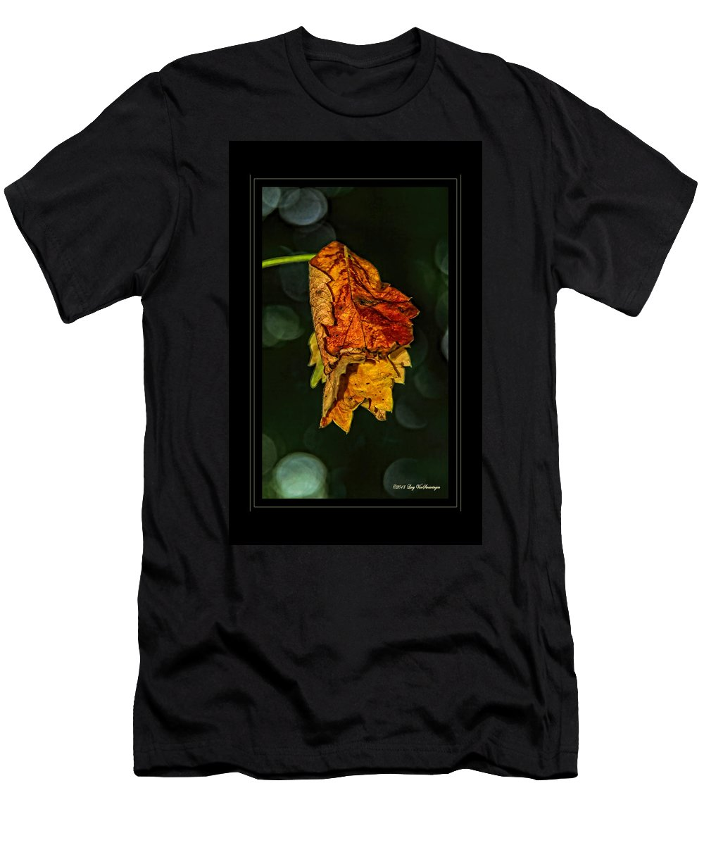 Fall Leaves Photograph T-Shirt featuring the photograph Hanging Gold framed by Lucy VanSwearingen
