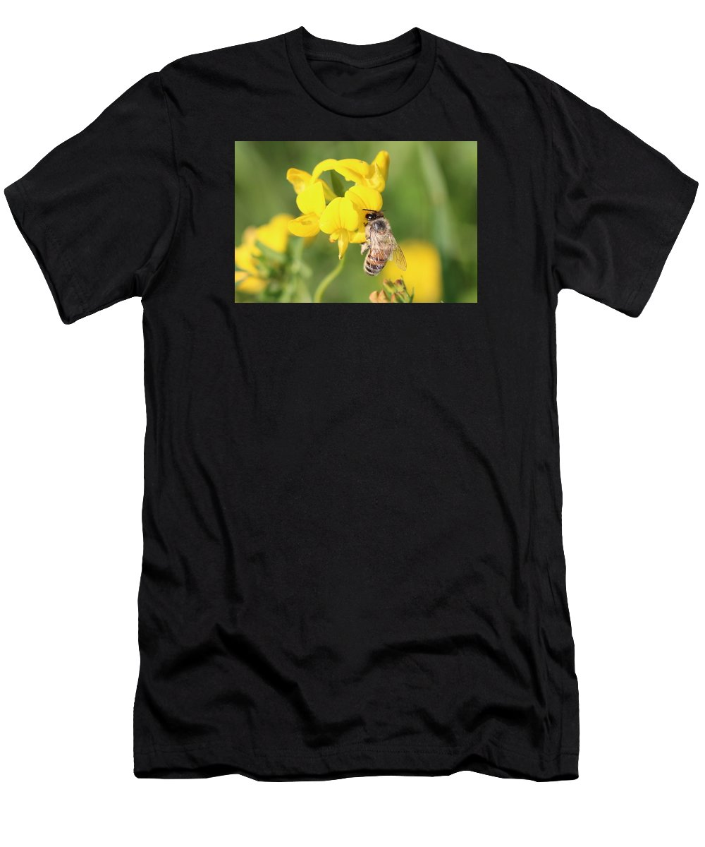 Honeybee Men's T-Shirt (Athletic Fit) featuring the photograph Hanging On Birdsfoot Trefoil by Lucinda VanVleck