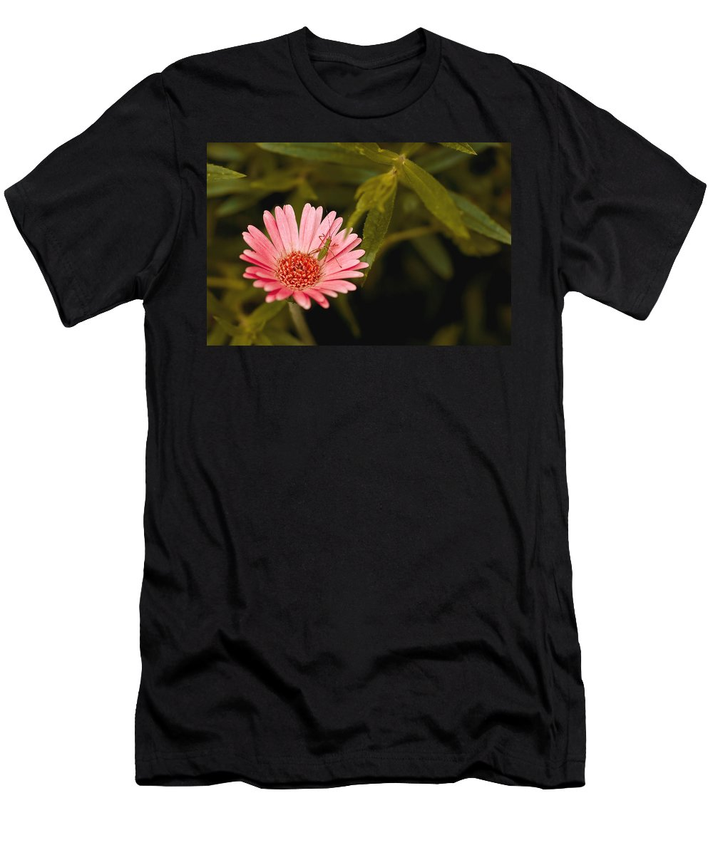 Longwood Gardens Men's T-Shirt (Athletic Fit) featuring the photograph Hanging Out With A Flower by Samantha Eisenhauer