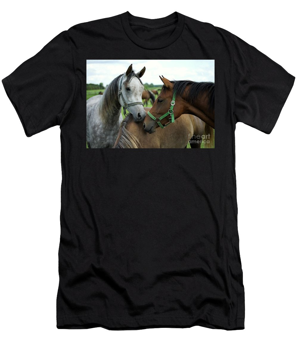 Horse Men's T-Shirt (Athletic Fit) featuring the photograph Having A Chat by Angel Ciesniarska