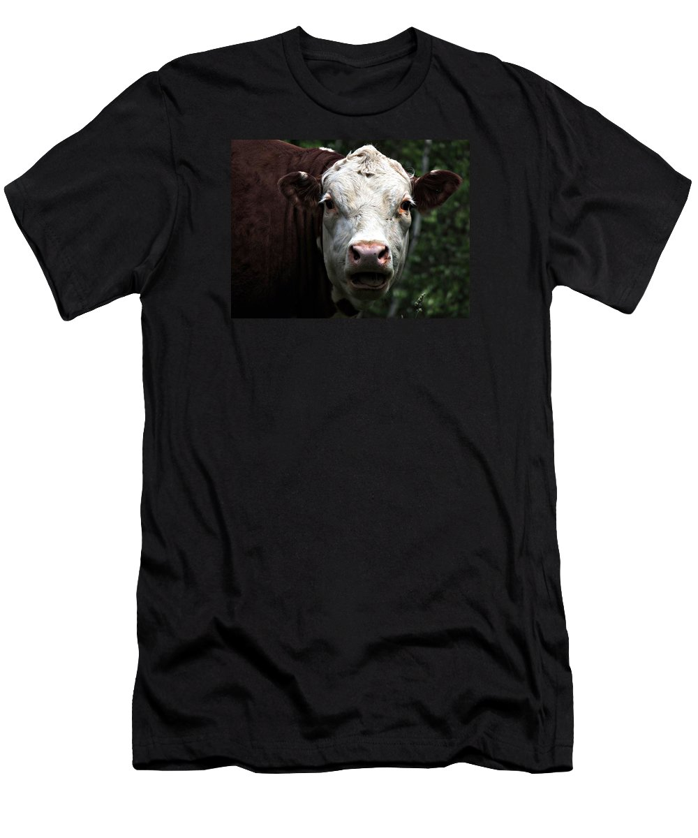 Animal Men's T-Shirt (Athletic Fit) featuring the photograph Help Me by Marcia Lee Jones