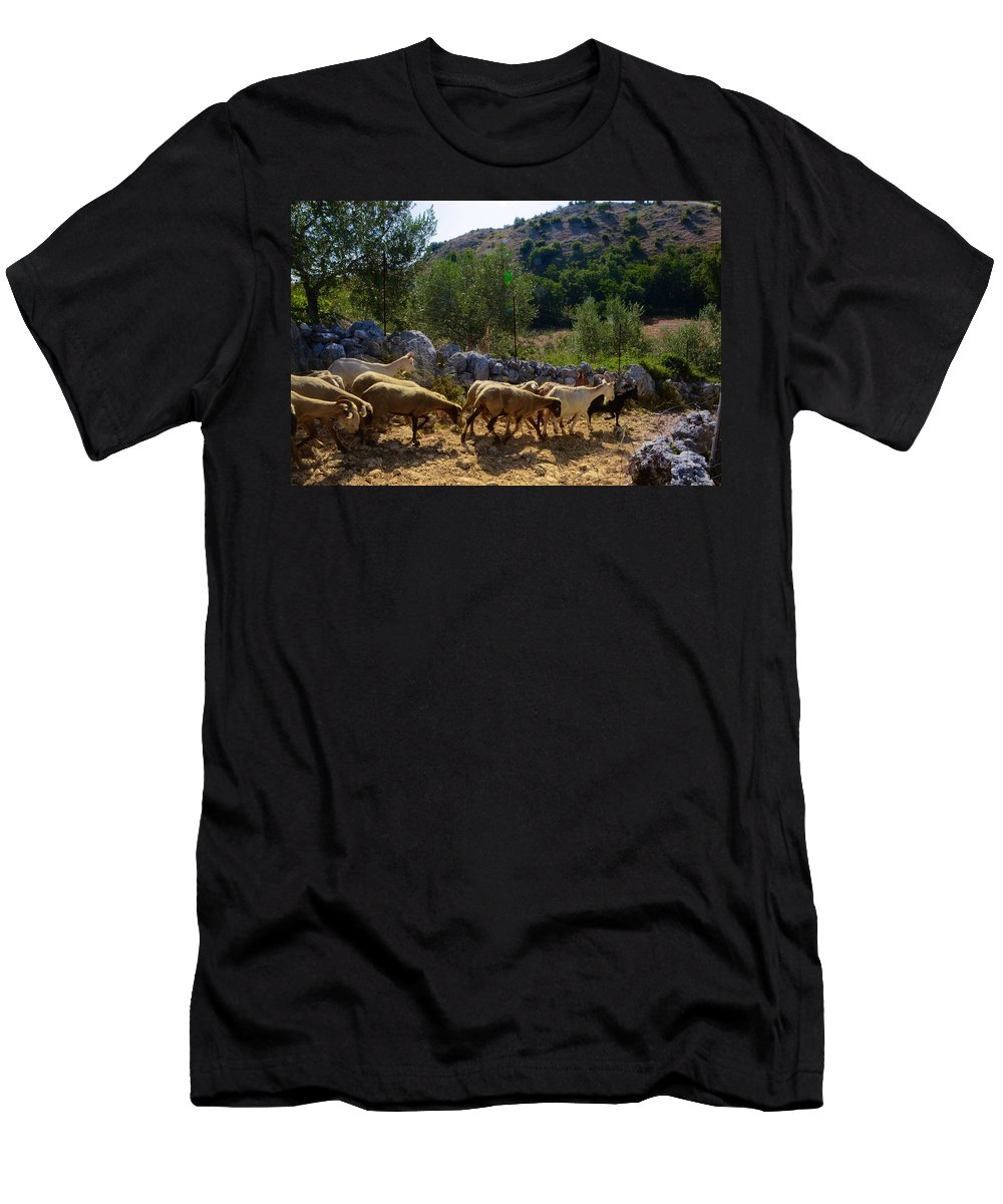 Mutton Men's T-Shirt (Athletic Fit) featuring the photograph Herd Of Sheep In Tuscany by Dany Lison