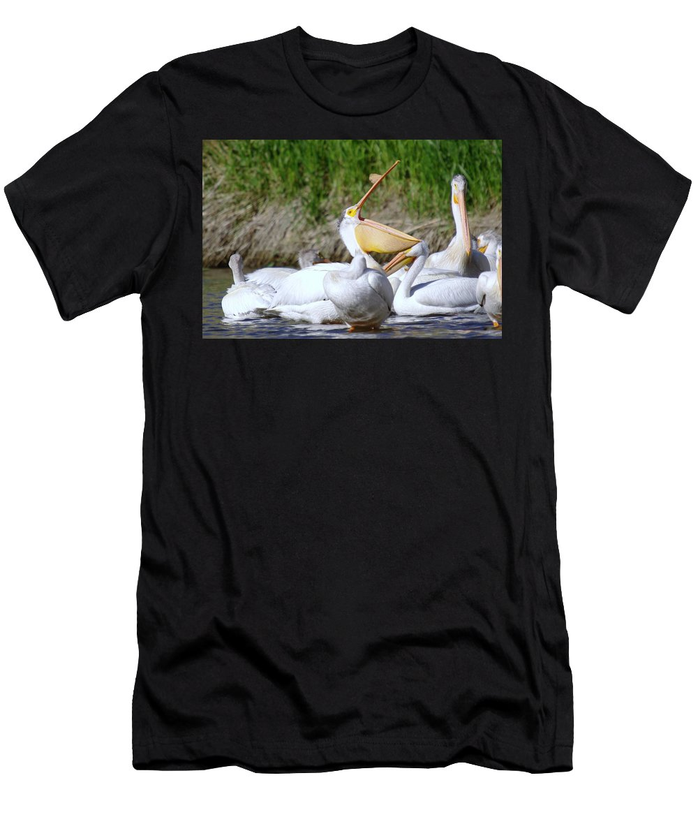 Pelicans Men's T-Shirt (Athletic Fit) featuring the photograph Here Fishy Fishy Fishy by Jeff Swan