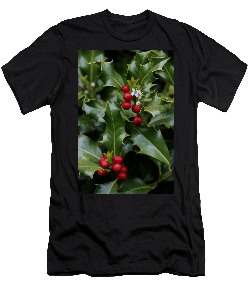 Holiday Holly Men's T-Shirt (Athletic Fit) featuring the photograph Holiday Holly by Wes and Dotty Weber