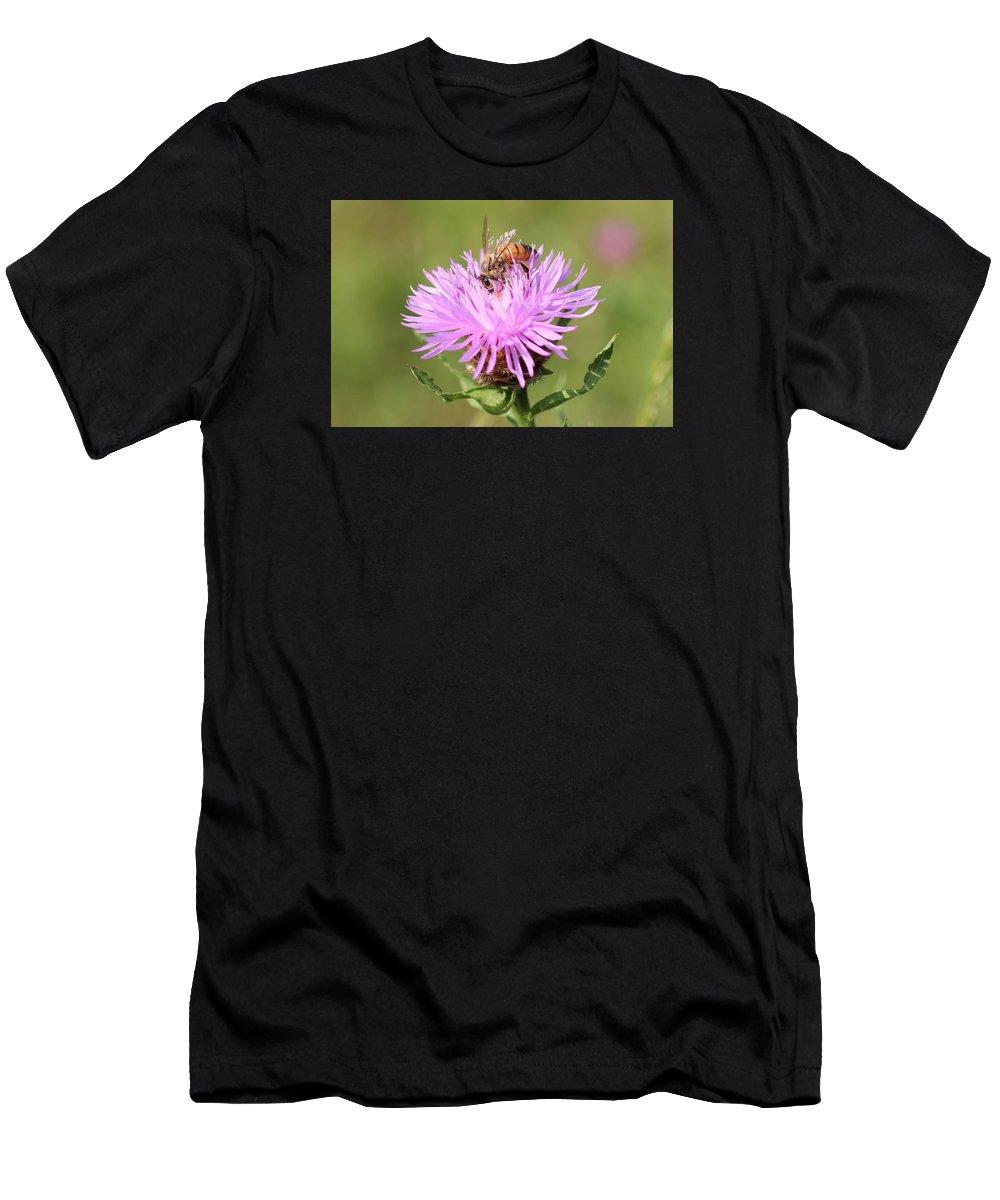 Honeybee Men's T-Shirt (Athletic Fit) featuring the photograph Honeybee At Work by Lucinda VanVleck