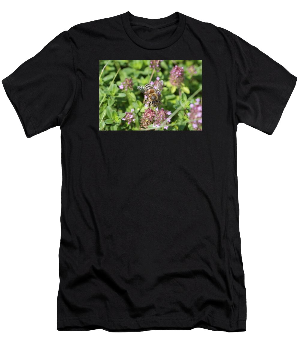 Honeybee Men's T-Shirt (Athletic Fit) featuring the photograph Honeybee On Heal All by Lucinda VanVleck