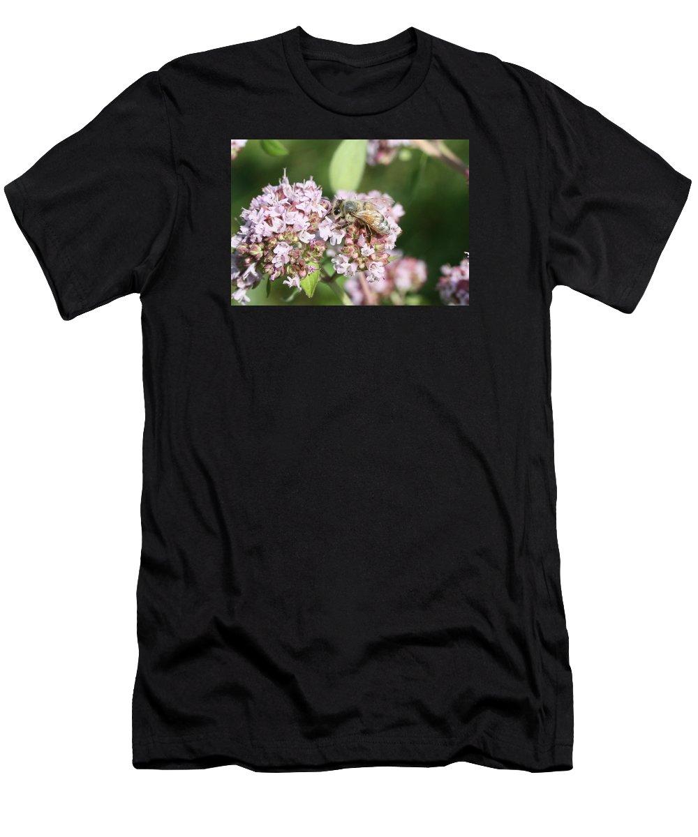 Honeybee Men's T-Shirt (Athletic Fit) featuring the photograph Honeybee On Oregano by Lucinda VanVleck