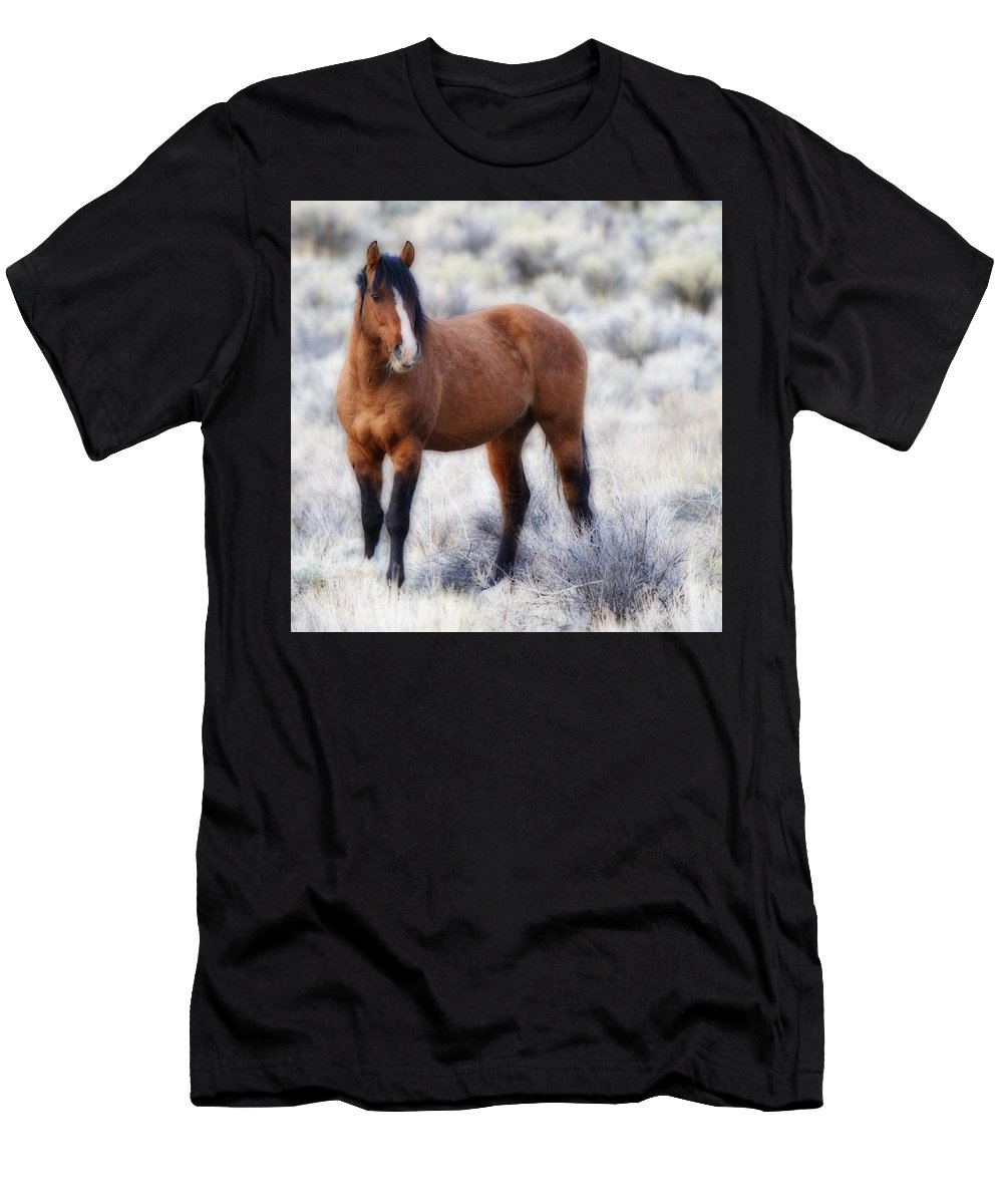 Honor Men's T-Shirt (Athletic Fit) featuring the photograph Honor by Wes and Dotty Weber