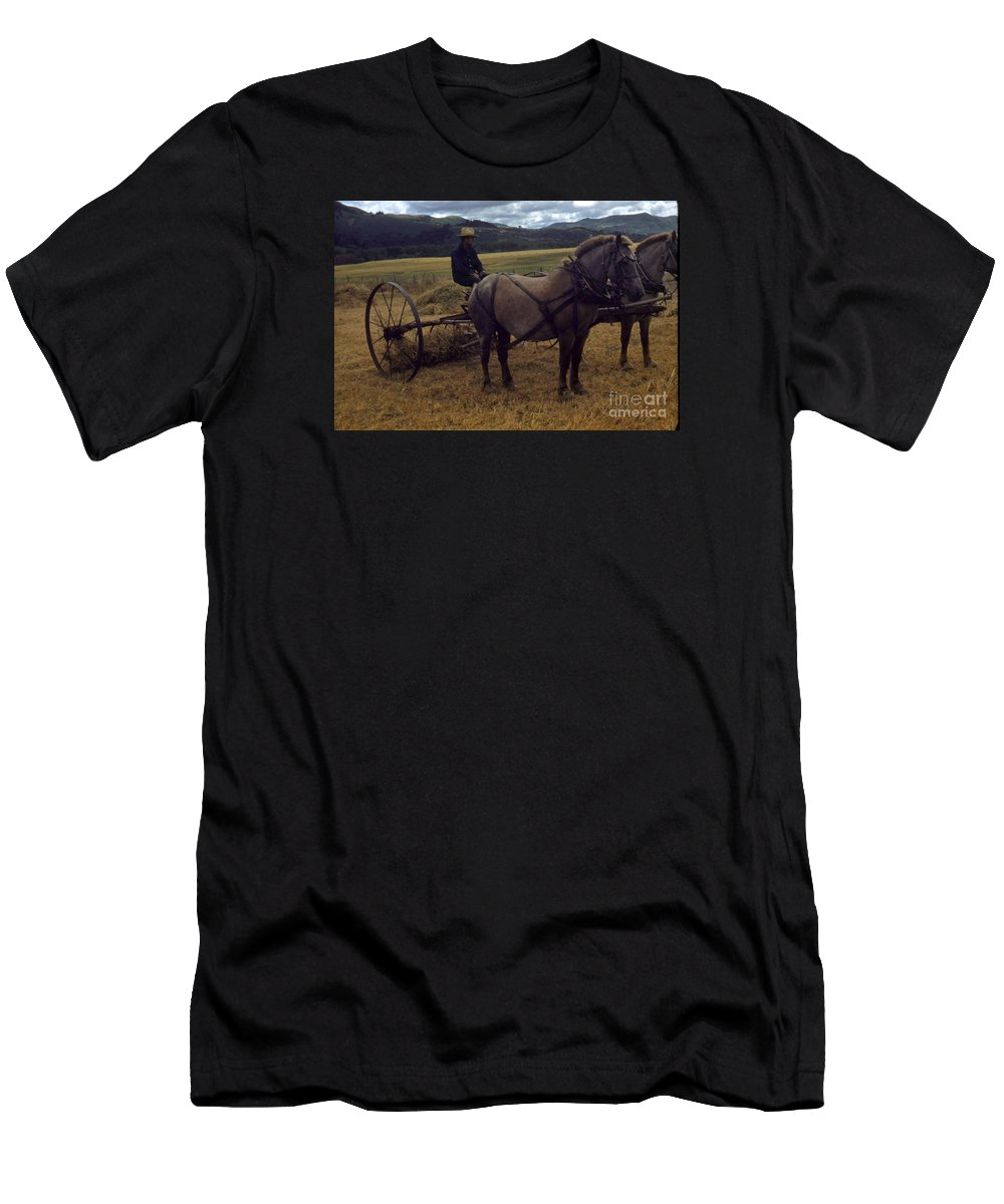 Horsedrawn Men's T-Shirt (Athletic Fit) featuring the photograph Horsedrawn Harvester Hay Rake On The Berta Ranch Carmel Valley California Circa 1950 by California Views Archives Mr Pat Hathaway Archives
